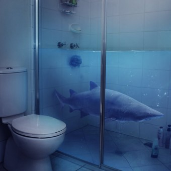 sharks in the shower